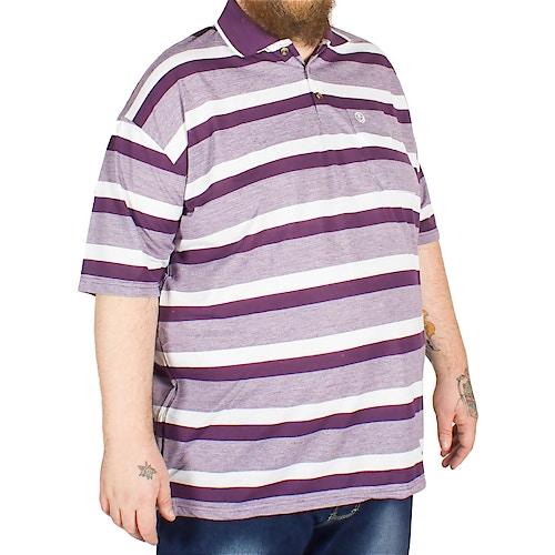 Brooklyn Hugo Stripe Polo Shirt Plum