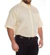 Lemon Yellow Short Sleeve Shirt