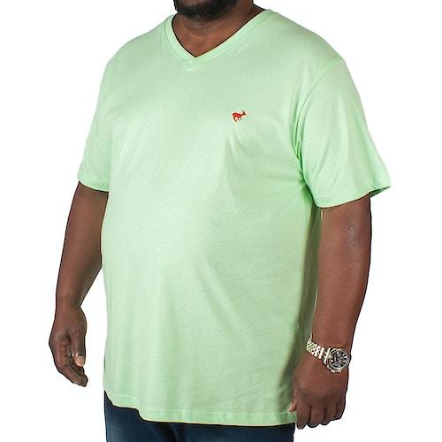 Bigdude Signature V-Neck T-Shirt Green