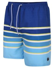 Espionage Stripe Swim Shorts Blue