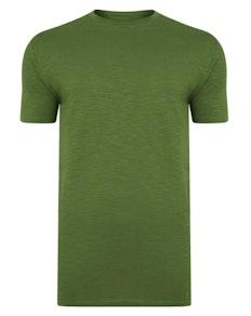 Bigdude Vintage T-Shirt Kaktusgrün